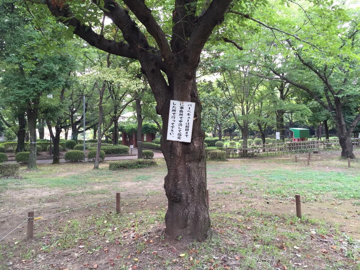 【桶川市】城山公園 テニスコートやバーベキューなんかもできるよ