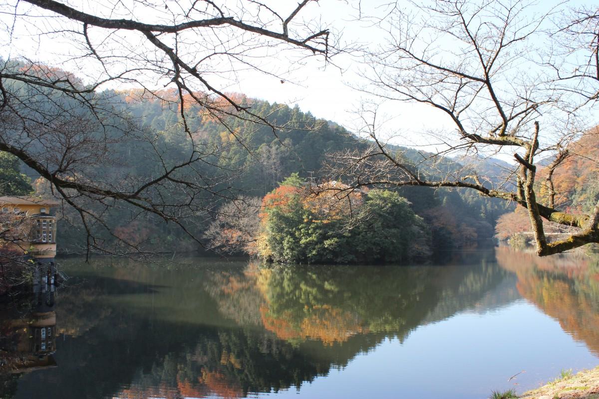 【埼玉県毛呂山町】散歩しながら、紅葉も楽しめる鎌北湖 実は心霊スポットが近くに!!