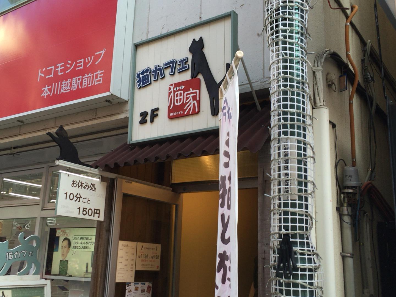 ネコカフェ「猫家 ねこや」で癒されてきた話【川越市 クレアモール商店街内】