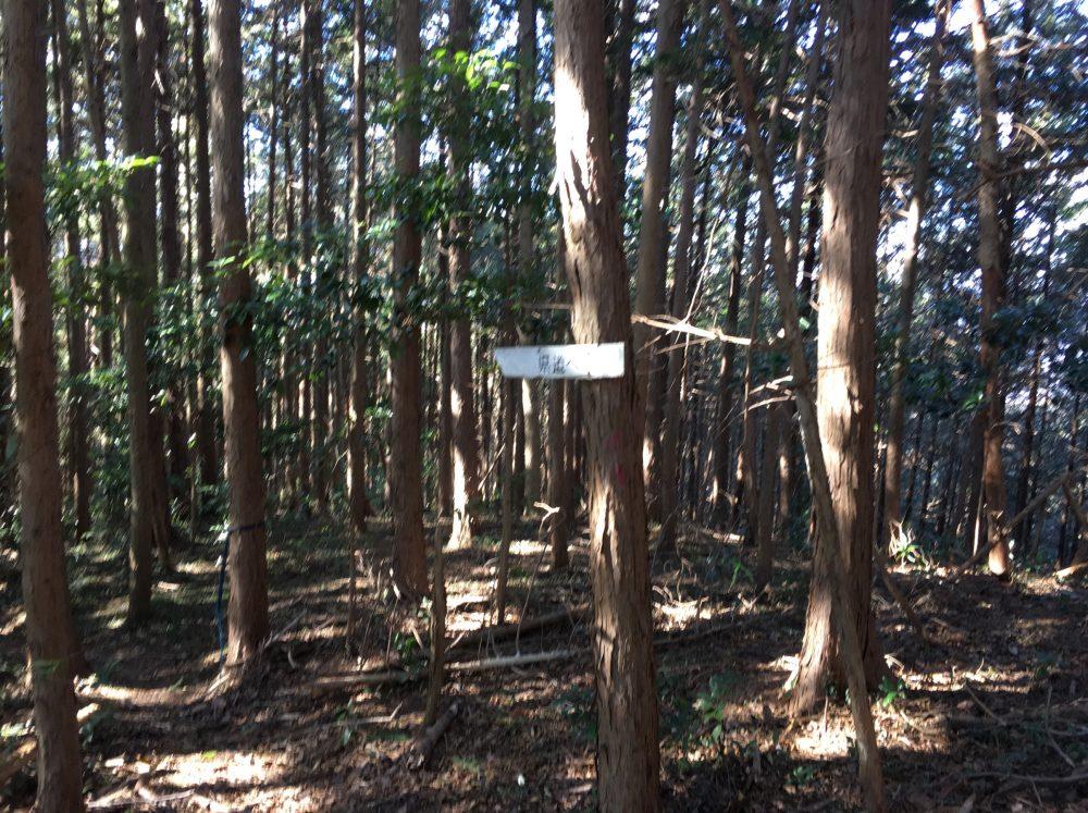 【埼玉県ときがわ町】標高418.2m 雷電山に登ってきた