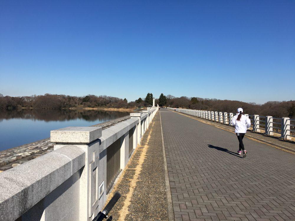 【所沢市】狭山湖1周のランニングコースはおすすめ!15K
